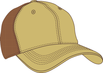 choose-the-cap-brown example